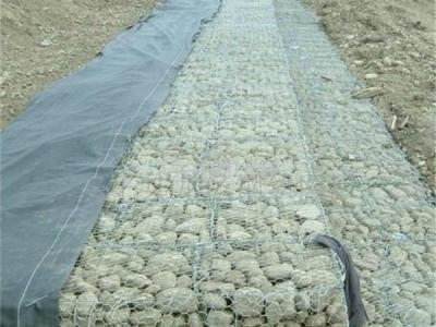 铅丝石笼网图片1